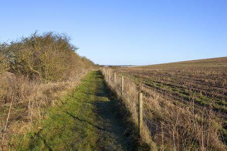a grassy bridleway with a hawthorn hedgerow and fence on a hilltop in a yorkshire wolds landscape under a clear blue sky in winter
