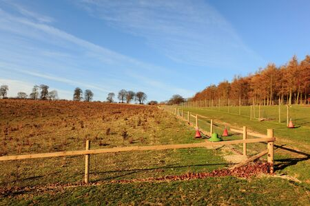 forestry and game rearind enclosures in the cenic Yorkshire wolds countryside in winter. Stock Photo