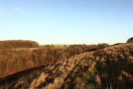 winter landscape with grassy hillside meadows and wooded slopes of the scenic Yorkshire wolds.