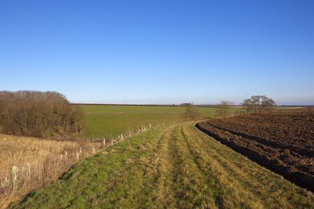 plow soil near a bridleway with dry grasses and woodland in a yorkshire wolds landscape under a clear blue sky in winter