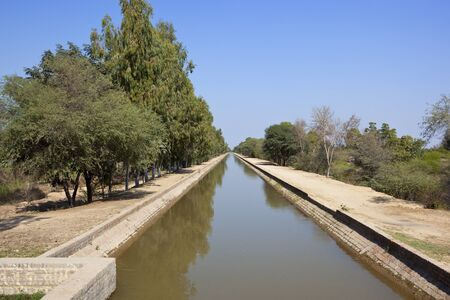 a straight rajasthan canal with eucalyptus tree lined sandy footpaths in india under a clear blue sky in springtime