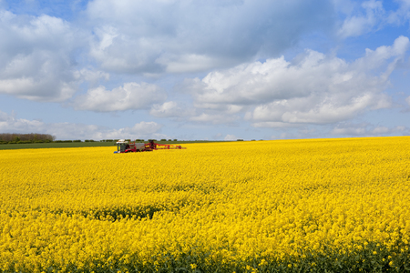 a red crop sprayer amongst the yellow flowers of an oilseed rape crop under a blue cloudy sky in springtime Stock Photo