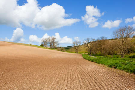 lines and patterns in cultivated chalky soil with yorkshire wolds scenery under a blue cloudy sky in springtime