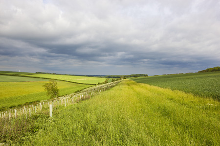 yorkshire wolds meadows and wheat fields with hills and hedgerows under a stormy sky in summer