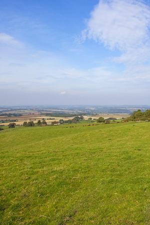 秋のフィールドと青い曇り空の下で生け垣ヨークシャー ウォルズ風景を見渡す丘の中腹に緑の草原