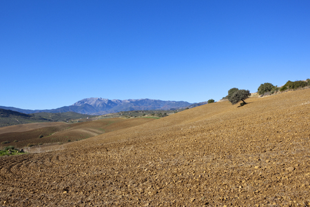 hilly andalucian farming landscape with mountains and plow soil under a clear blue sky in spain Stock Photo