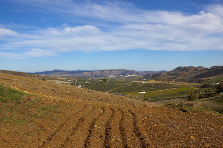 mountains olive groves and red plow soil in scenic andalucia under a blue cloudy sky in spain