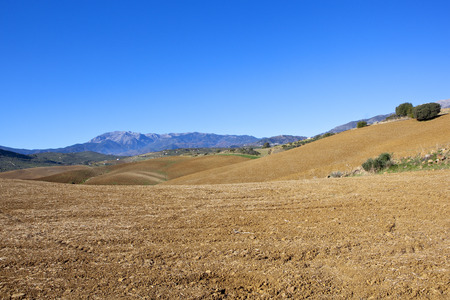 rolling hills in andalucia spain with plowed fields and scenery under a blue sky