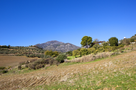 an andalusian farming landscape with olive groves cultivated soil and mountain scenery under a blue sky in spain Stock Photo