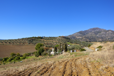 an agricultural spanish landscape in andalusia with farm villas and olive groves in mountain scenery under a blue sky