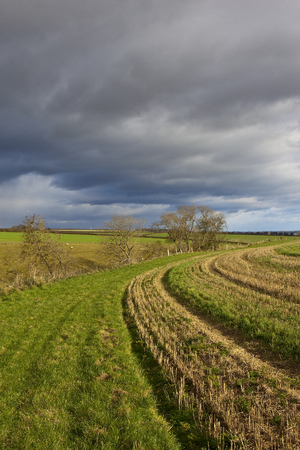 a grassy bridleway curving around a straw stubble field under a stormy winter sky in the yorkshire wolds