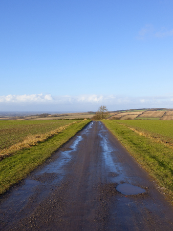 a hilltop farm track overlooking the vale of york with fields and hedgerows under a blue sky in the yorkshire wolds