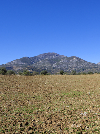 spanish mountain scenery with a newly cultivated plowed field under a blue sky in andalusia