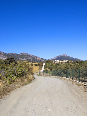 a white gravel track leading to hillside olive groves with mountain scenery and parched grasses under a blue sky in andalusia spain