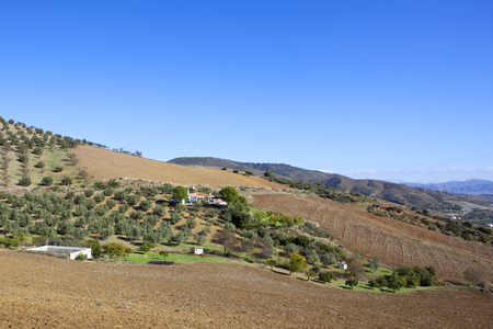 a white villa in amongst olive groves and plowed fields with wooded mountains under a clear blue sky in andalusia spain Stok Fotoğraf