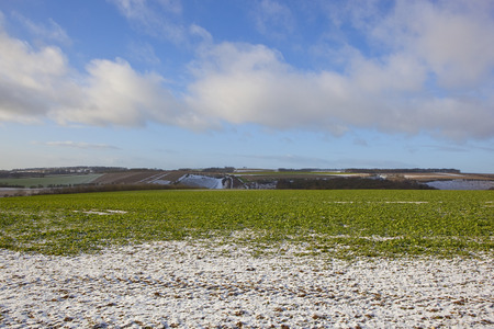 agricultural landscape with a light covering of snow near a wooded valley with an oilseed rape crop under a blue cloudy sky in the yorkshire wolds
