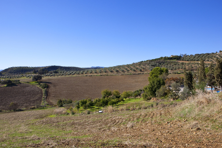 extensive olive groves and cultivated fields with mountain scenery under a blue sky in andalusia spain