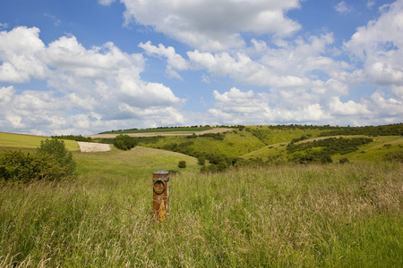 a scenic valley in summer with hills and hedgerows and a decorative post amongst wild grasses under a blue summer sky in the yorkshire wolds