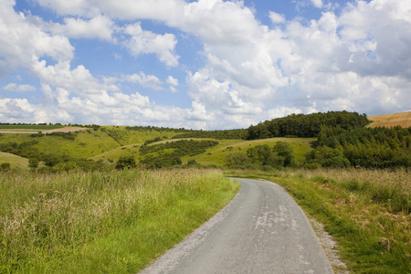 a curving country road going through a scenic wooded valley with wild grasses and meadows under a blue summer sky in the yorkshire wolds Reklamní fotografie