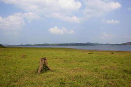 tree stump and lake at minnerya national park under a blue cloudy sky in sri lanka