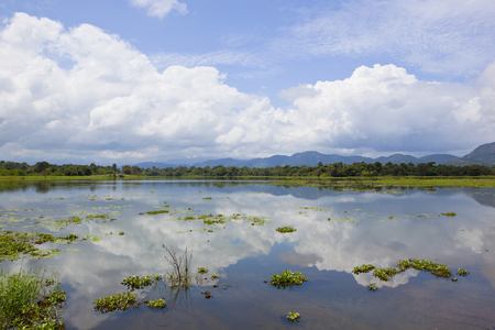 mirror lake at wasgamuwa national park in sri lanka with woodland and mountains under a blue sky with fluffy white clouds