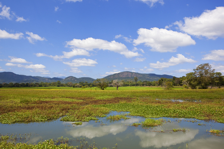 a sri lankan lake with a backdrop of scenic mountains and forest under a blue sky with white fluffy clouds Reklamní fotografie
