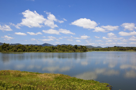 a beautiful sri lankan mirrror lake in tranquil surroundings with forest mountains lotus and water hyacinth under a blue sky with fluffy white clouds