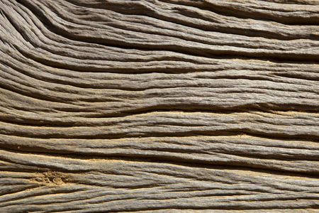 sri lankan wood texture background with lines patterns and curves Reklamní fotografie