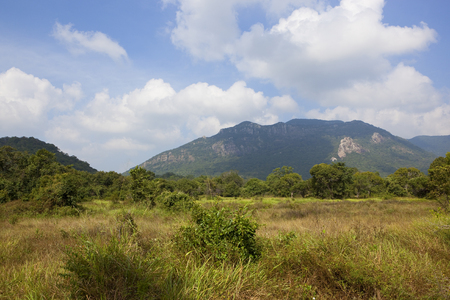 sri lankan scenic landscape at ritigala with mountains woodland and dry grasses under a blue sky with fluffy white clouds