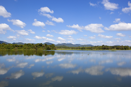beautiful mirror lake with woodland and mountains in wasgamuwa national park under a blue sky with fluffy white clouds in sri lanka Reklamní fotografie