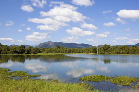 beautiful lake with reflections lotus and water hyacinth near mountains and woodland in wasgamuwa national park in sri lanka Reklamní fotografie