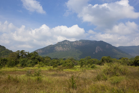 central sri lanka mountain landscape with tropical forest and wild grasses under a blue cloudy sky near ritigala Reklamní fotografie