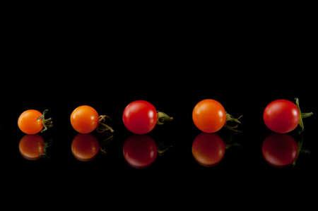 shiny black: Tasty Tomatoes