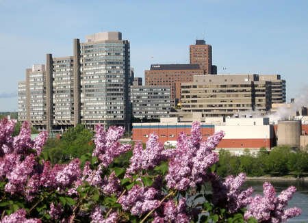 Lilac and buildings near river in Ottawa,Canada Stock Photo - 6984605