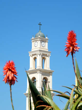 Aloe and Bell Tower of St. Peters Church in old city Jaffa, Israel Stock Photo - 9640517