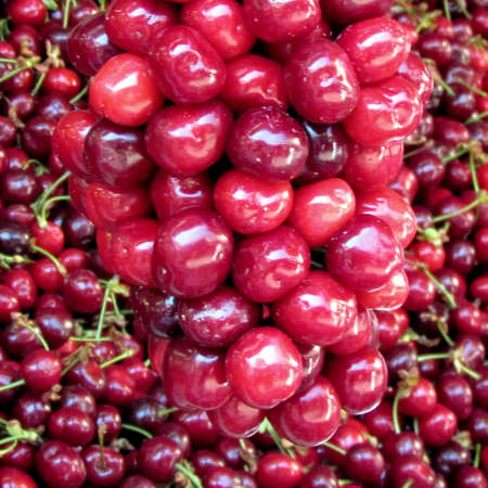 Cherry fruit on bazaar in Tel Aviv, Israel Stock fotó - 13670555