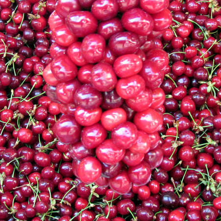 Red cherry fruit on bazaar in Tel Aviv, Israel