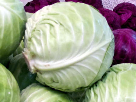 White and red cabbage on bazaar in Tel Aviv, Israel