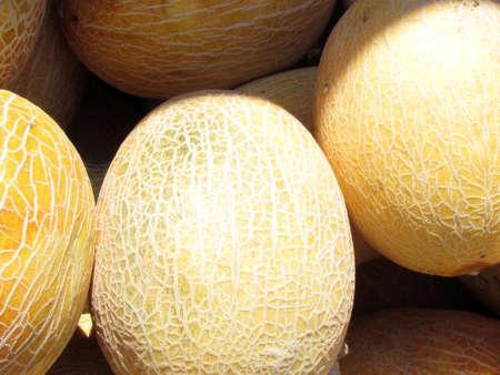 Large melons on bazaar in Tel Aviv, Israel Stock fotó - 13769888