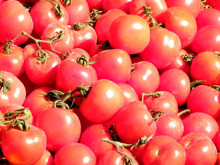 Beautiful red tomatoes on bazaar in Tel Aviv, Israel photo