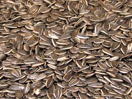 Sunflower Seeds on bazaar in Tel Aviv, Israel                                                                                                                           Stock fotó