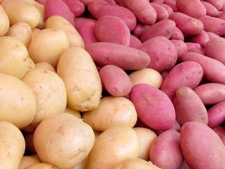 White and Red Potatoes on bazaar in Tel Aviv, Israel Stock fotó - 13918484