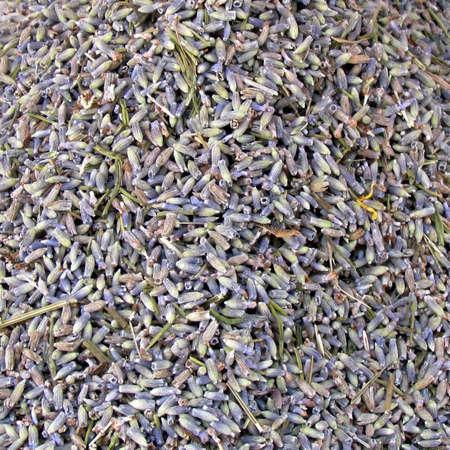 nontraditional: Lavender tea on bazaar in Tel Aviv, Israel                                         Stock Photo