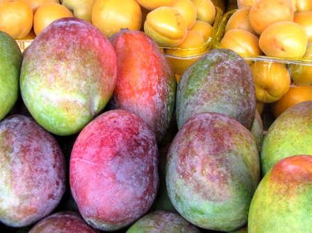 Mango on bazaar in Tel Aviv, Israel                                  免版税图像