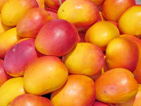 Beautiful mango on bazaar in Tel Aviv, Israel