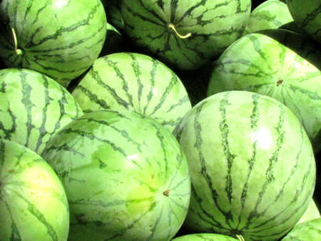 Large watermelons on bazaar in Tel Aviv, Israel