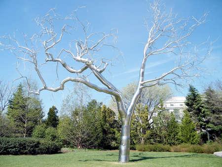 워싱턴 DC, 미국에서 실버 트리 조각
