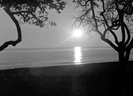 stadia: Old black and white photo: Sunset on shore of Black Sea near Southern Culture Park in Adler, Russia