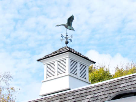 Duck weather vane on roof in St. Jacobs Village Ontario, Canada photo