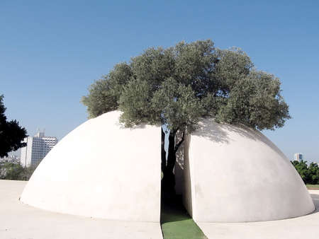 edith: White hemisphere and tree in Edith Wolfson Park in Ramat Gan, Israel